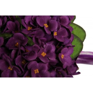 Gelin Çiçeği Mor Menekşe